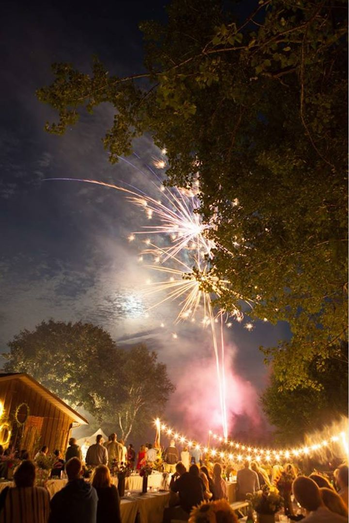 Photo by Meagan Hahn: Fireworks light up the sky in a backyard wedding